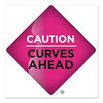 "Caution Curves Ahead Car Magnet 3"" x 3"""
