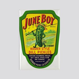 June Boy Pickles Rectangle Magnet