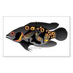 Oscar Ciclid Amazon River Sticker (Rectangle 10 pk