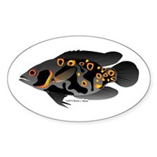 Oscar Ciclid Amazon River Sticker (Oval)