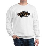 Oscar Ciclid Amazon River Sweatshirt