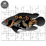 Oscar Ciclid Amazon River Puzzle