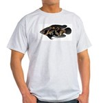 Oscar Ciclid Amazon River Light T-Shirt