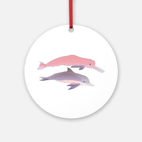 Boto and Tucuxi Amazon River Dolphins Ornament (Ro