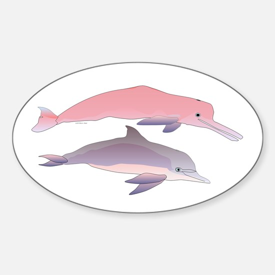 Boto and Tucuxi Amazon River Dolphins Decal