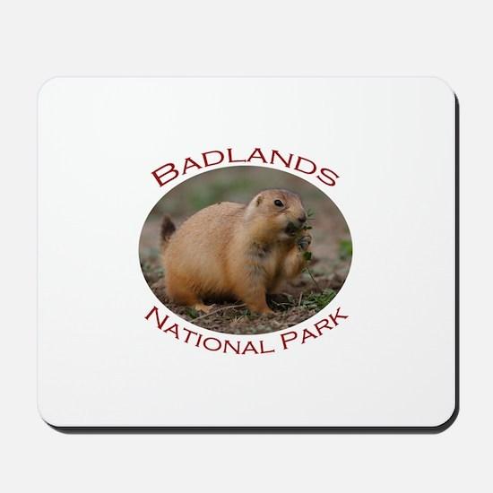 Badlands National Park...Prairie Dog Snacking Mous