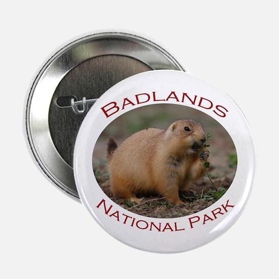 Badlands National Park...Prairie Dog Snacking 2.25