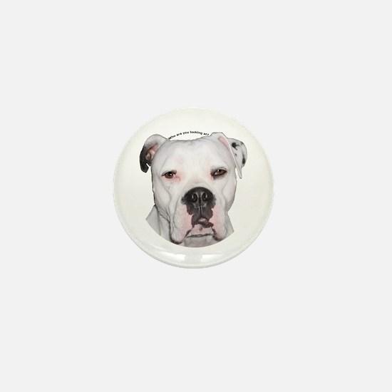 American Bulldog copy.png Mini Button