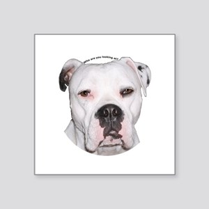 "American Bulldog copy Square Sticker 3"" x 3"""