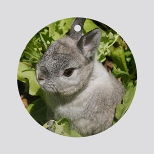 Cute Dwarf Bunny Rabbit round ornament