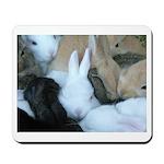Sea of Bunnies Baby Bunny Rabbit purple Mousepad
