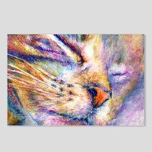 Sleeper Cat Postcards (Package of 8)