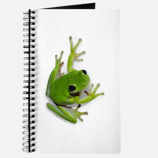 Tree Frog - Journal