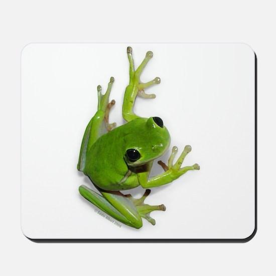 Tree Frog -  Mousepad