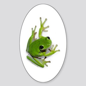 Tree Frog - Oval Sticker