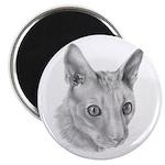 Cornish Rex Cat Magnet