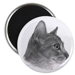 Abysinnian Cat 2.25