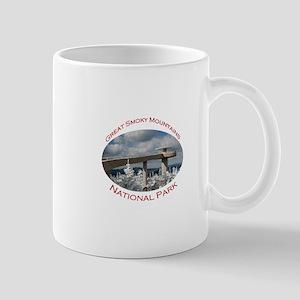 Great Smoky Mountains National Park...Clingmans Mu
