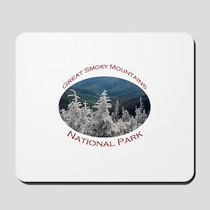 Great Smoky Mountains National Park...Clingmans Mo