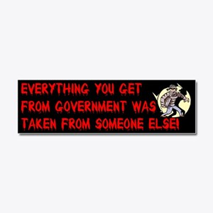 Everything You Get From Government 10x3 Car Magnet