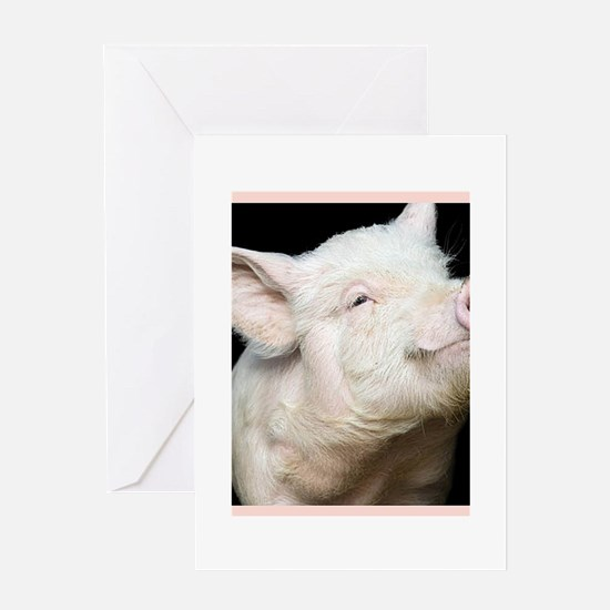 Cutest Pig Greeting Card