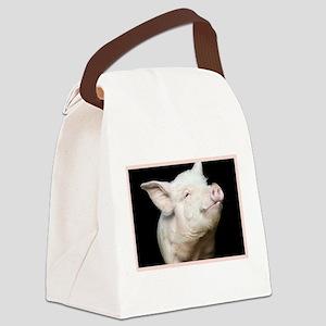 Cutest Pig Canvas Lunch Bag