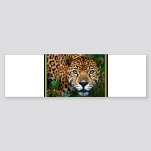 Jaguar Sticker (Bumper)