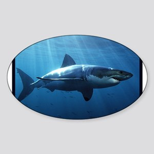 Great White Shark Sticker (Oval)
