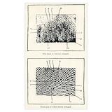 Fingerprint Posters