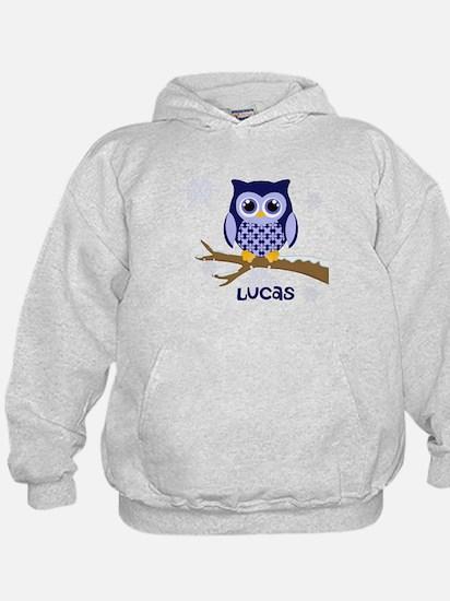Custom name winter owl blue Hoodie