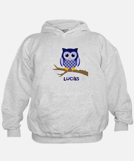Custom name winter owl blue Hoody