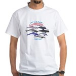 All Dolphins Lets Swim Together White T-Shirt