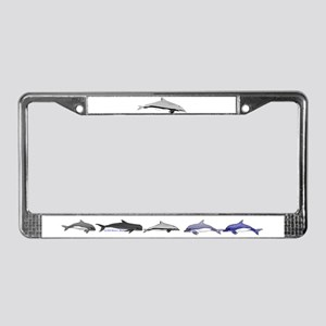 Frasers Striped Dolphin License Plate Frame
