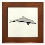 Frasers Striped Dolphin Framed Tile