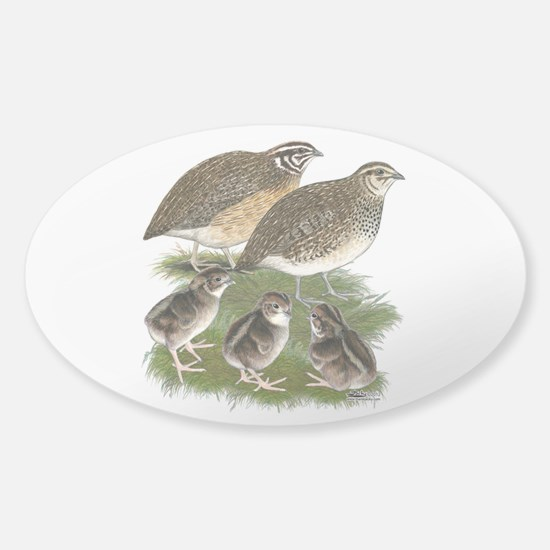 Coturnix Quail Family Sticker (Oval)