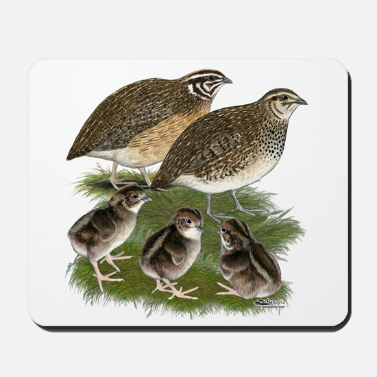 Coturnix Quail Family Mousepad