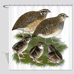 Coturnix Quail Family Shower Curtain