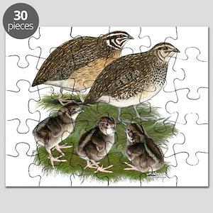 Coturnix Quail Family Puzzle