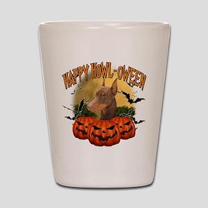 Happy Halloween Doberman Shot Glass