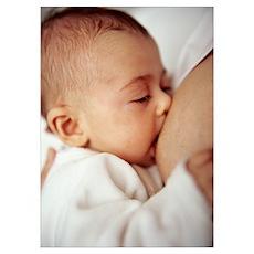 Baby girl breastfeeding Poster