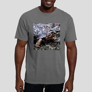 boxieclock1 Mens Comfort Colors Shirt