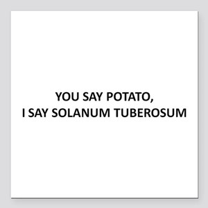 YOU SAY POTATO, I SAY SOLANUM TUBEROSUM Square Car