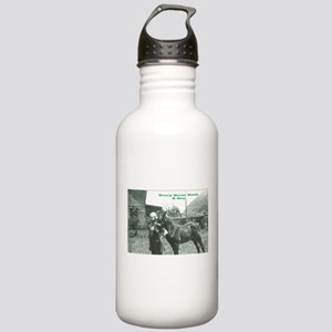 Every Horse Needs a Boy Stainless Water Bottle 1.0