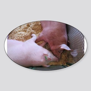Pig Love Sticker (Oval)