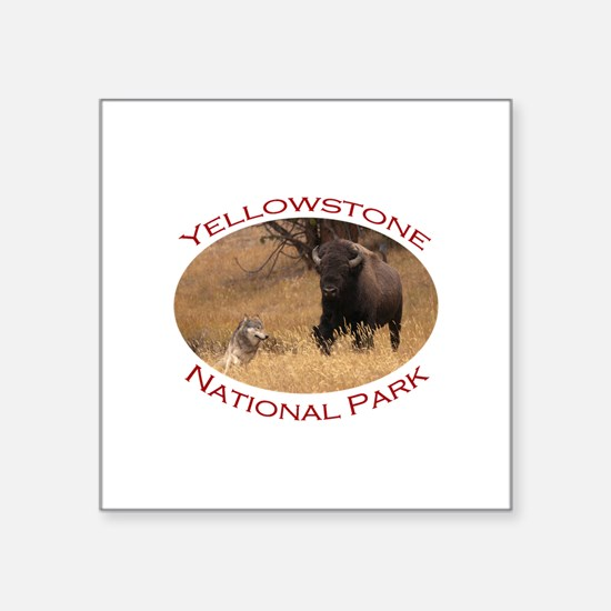 Yellowstone National Park...Bison & Wolf Square St