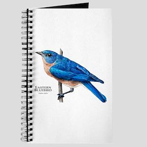 Eastern Bluebird Journal