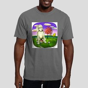 2-Brian Mens Comfort Colors Shirt