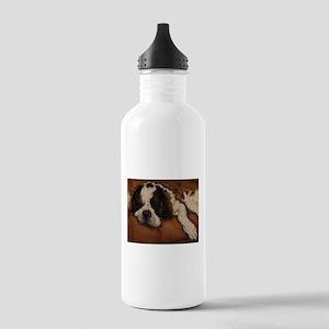 Saint Bernard Sleeping Stainless Water Bottle 1.0L