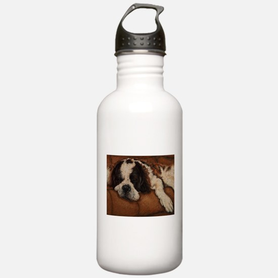 Saint Bernard Sleeping Water Bottle