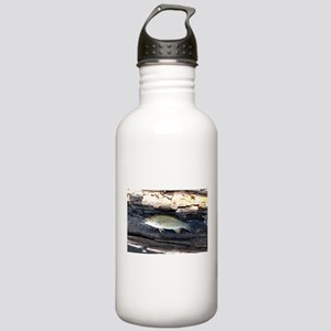 Woody Smallmouth Bass Stainless Water Bottle 1.0L